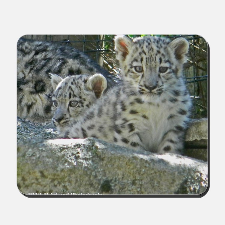 Baby Snow Leopards Mousepad