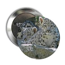 """Baby Snow Leopards 2.25"""" Button"""
