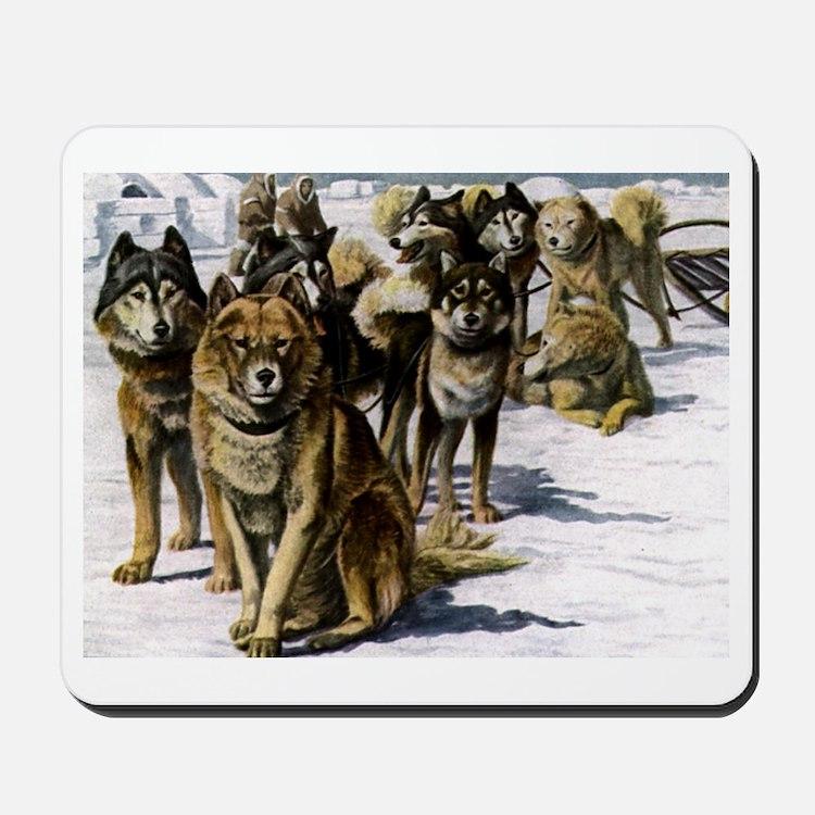 Sled Dog Husky Portrait Mousepad