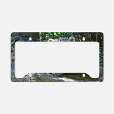 Baby Snow Leopard License Plate Holder