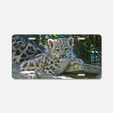 Baby Snow Leopard Aluminum License Plate