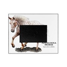 Appaloosa Horse Picture Frame