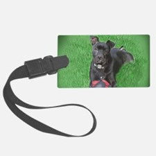 Pit Playing Luggage Tag