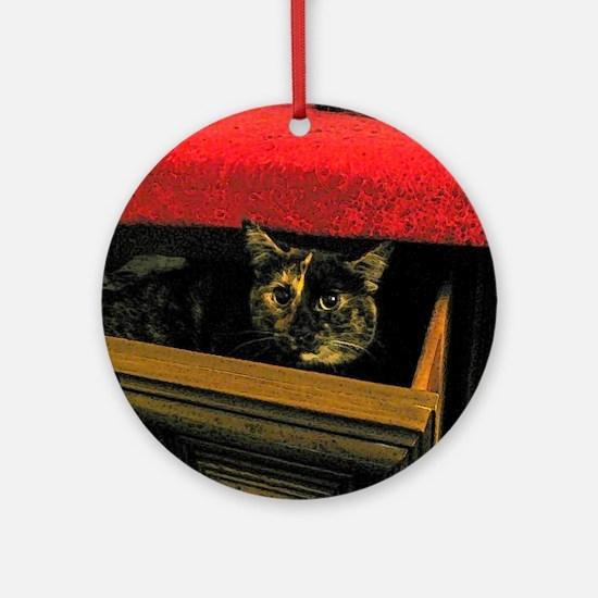 Kitten hiding in sock drawer Round Ornament