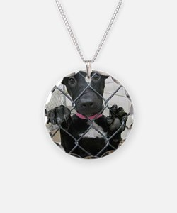 Forgotten Paws Animal rescue Necklace