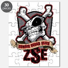 ZSE Badge Puzzle