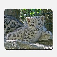 Snow Leopard Cub Mousepad