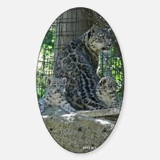 Snow Leopard Family Decal