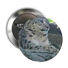 """Adult Snow Leopard 2.25"""" Button"""
