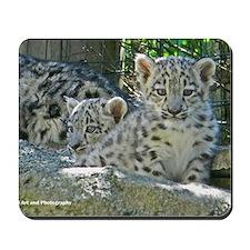 2 baby snow leopards Mousepad
