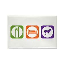 Eat Sleep Entlebucher Rectangle Magnet