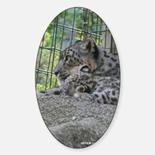 Mom and Baby Snow Leopard Decal