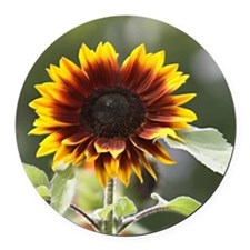 Sun Flower Round Car Magnet