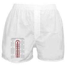 Seven Sacraments of the Orthodox Chur Boxer Shorts