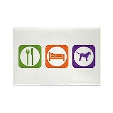 Eat Sleep Swissie Rectangle Magnet (100 pack)