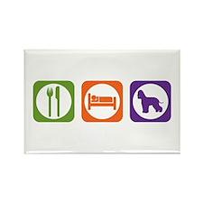 Eat Sleep Spaniel Rectangle Magnet (100 pack)