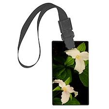GreetingCard_Flower_2 Luggage Tag