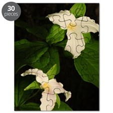 GreetingCard_Flower_2 Puzzle