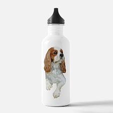 Dexter The Dog3 Water Bottle