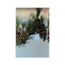 GreetingCard_PineCone_2 Rectangle Magnet