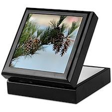 GreetingCard_PineCone_2 Keepsake Box