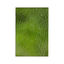 GreetingCard_Web_1 Rectangle Magnet