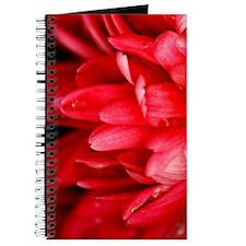 GreetingCard_Flower_4 Journal