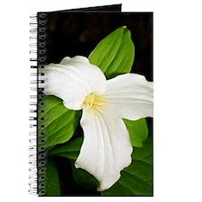 GreetingCard_Flower_3 Journal