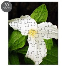 GreetingCard_Flower_3 Puzzle