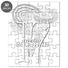 17 seconds swirl Puzzle