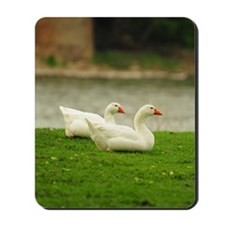 GreetingCard_Swan_1 Mousepad