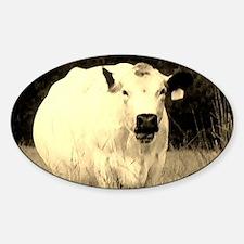 British White Cow at Pasture - Sepi Decal