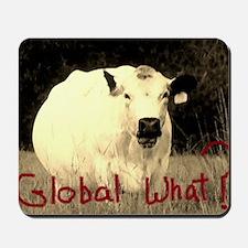 Global Warming?  Yeah right . . . Mousepad