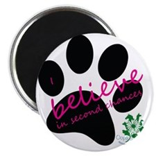 I Believe in Second Chances Magnet