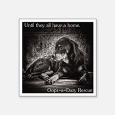 "Until they all have a home Square Sticker 3"" x 3"""