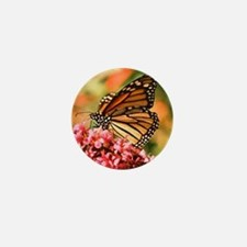 Beautiful Butterfly Mini Button
