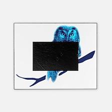 owl owlet bird night  Picture Frame
