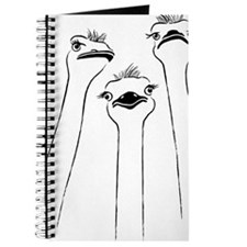 ostrich emu bird long neck Journal