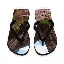 capitol reef Flip Flops
