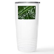Green Leaf Rain Drops Large Fra Travel Mug