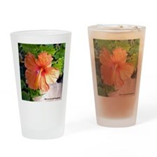Hibiscus Drinking Glass