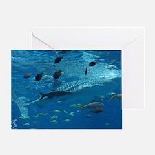 Whale Shark 23 x 35 Print Greeting Card