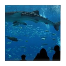 Whale Shark 16 x 20 Print Tile Coaster