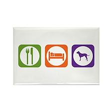 Eat Sleep Dogo Rectangle Magnet (100 pack)