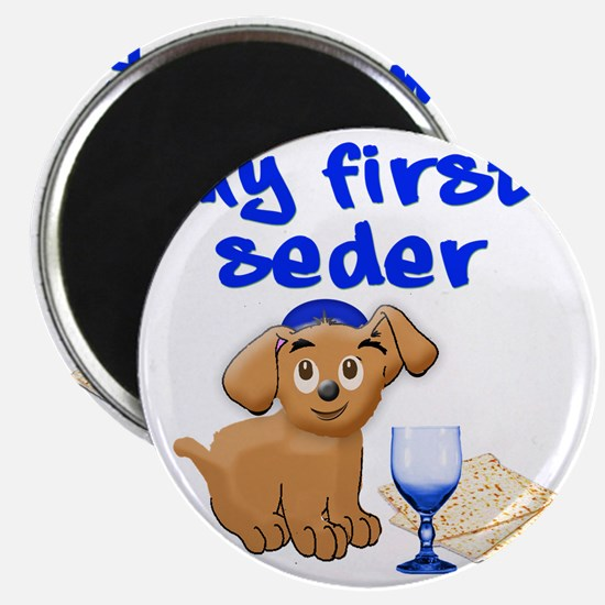 my first Seder Magnet
