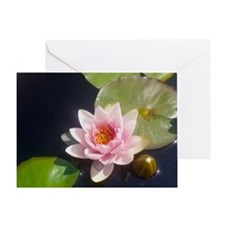 Pink Water Lily Greeting Card