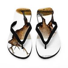 Rocky Mountain Elk Flip Flops