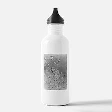 Paratrooper skyline Sports Water Bottle