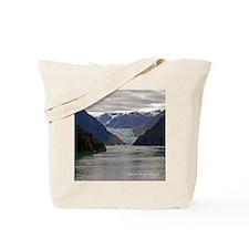Tracy Arm Glacier Tote Bag