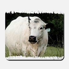 British White Cow at Pasture Mousepad